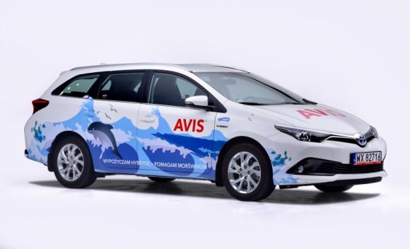Hybrydy Toyoty z Avis wspierają bałtyckie morświny