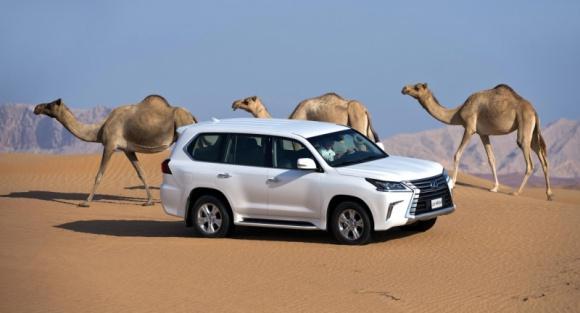 Lexus wjeżdża na nowy rynek