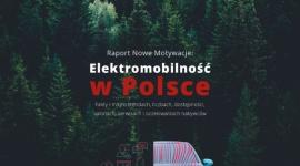 """Salony i serwisy bez """"energii"""" do sprzedaży samochodów elektrycznych BIZNES, Motoryzacja - Stan rozwoju elektromobilności w Polsce AD 2019"""